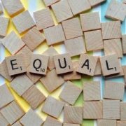 Equality plans in companies